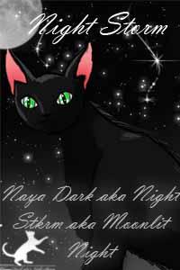 Ночная Гроза
