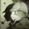 Xilenum