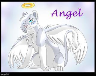 Ангелоцветик