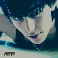Тайлер Пуппер