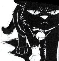 кошка Бич