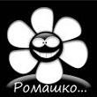 Роман_ГЛ