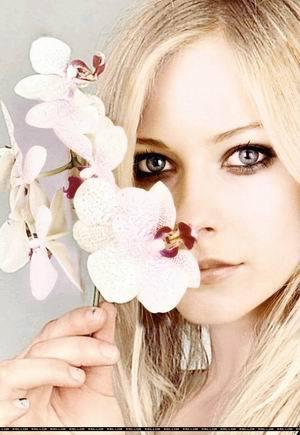 Rosalie Laurence