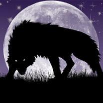 Wolf'sE.C.H.O.