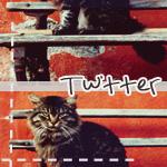 .twitter