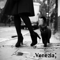 .Venezia;