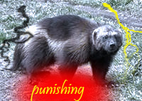 punishing