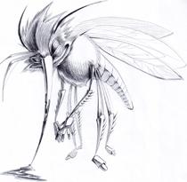 Африканский комар