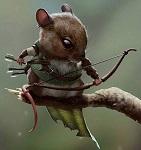 Шервудская Мышь