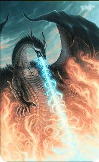 Dragon1654