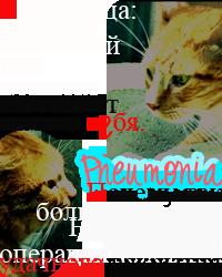 Пнемония