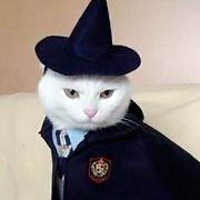 Кошка_Мёбиуса