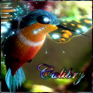 Calibry