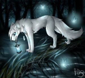 Серая волчица