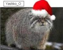 Yashko