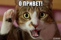 Олеко (алексей) Мордовин