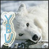 Ybu Rey