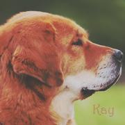 -Kay;