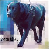 Martin;