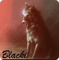 Блэки