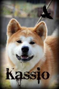 Кассио
