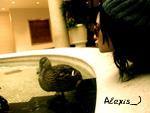 Alexis_)