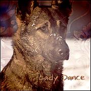 Lady Dance