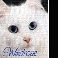 .Windrose