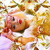 Lina Lay Roll