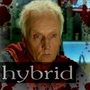Hybrid Hoffman