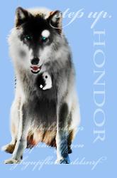 Хондор