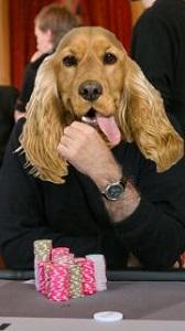 Собаковод