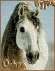 Сивка Бурка
