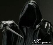 Morgomir
