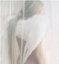 angel_lik