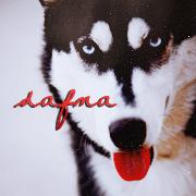 Dafna [x]