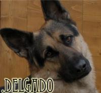 .Delgado
