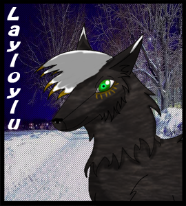 Layloylu