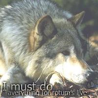 .|Wolf
