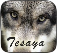 Tesaya