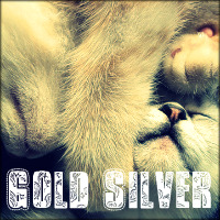 Gold|Silver