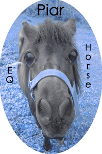 Eq-Horse