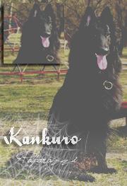 .Kankuro
