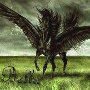 =)Norsen Wind(=