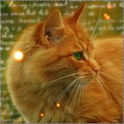 Katti