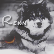 Renisans