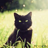 .poison