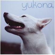 yukona;
