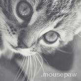.mousepaw