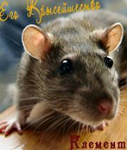 Крыс Клемент
